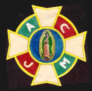 La ACJM fue fundada en 1913 y en 1917 estaba ya muy consolidada y fuerte . Pues la ACJM tuvo un papel fundamental en la Guerra Cristera. Hubo necesidad de reclutar a todos los militantes y dirigentes para defender a Dios y a la Patria.