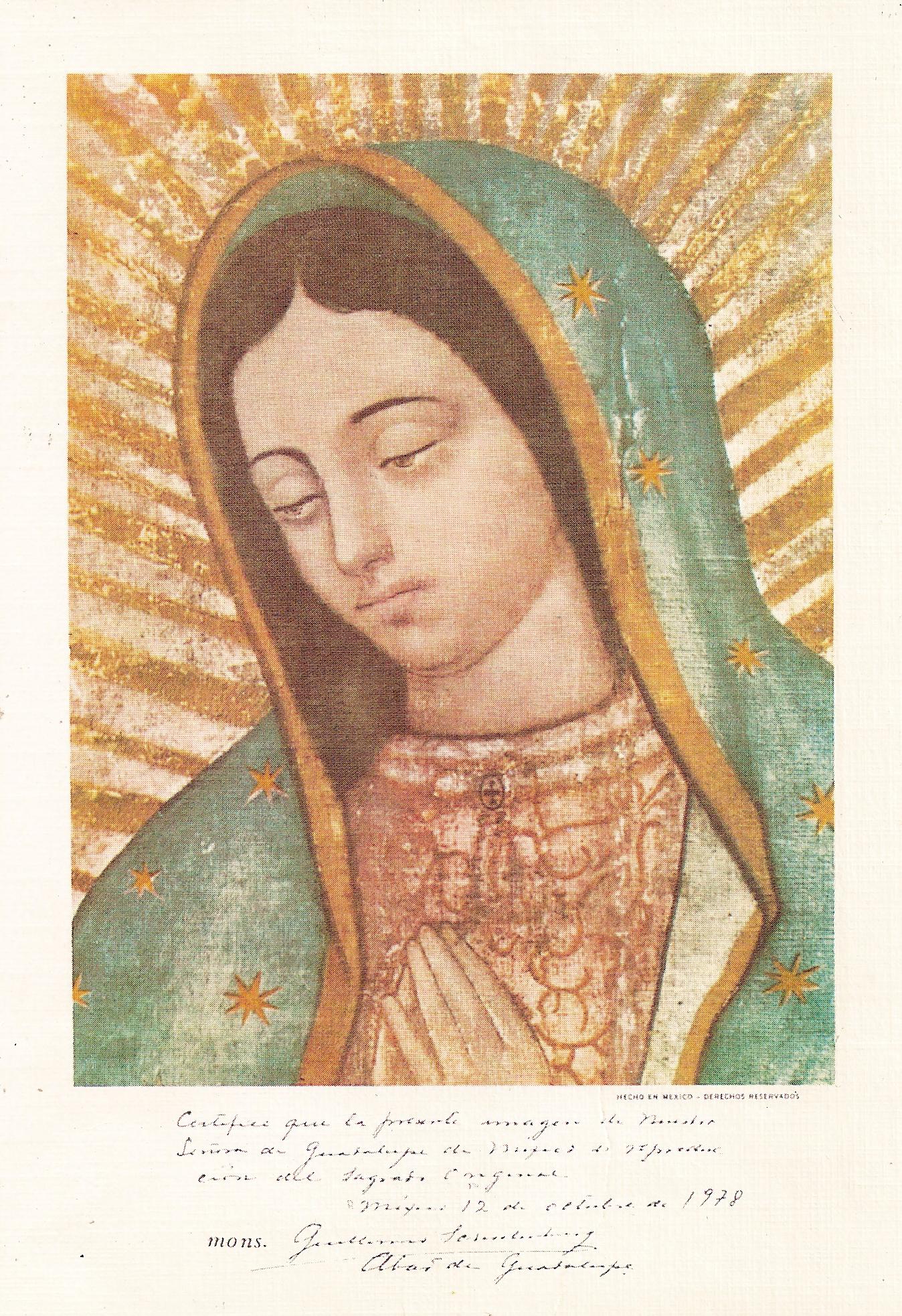 El Misterio de la Virgen de Guadalupe Mejicana