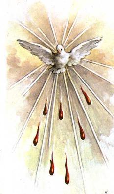 palomita y 7 lenguas de fuego - espiritu